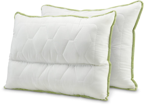 Dormeo Aloe Vera Pillow Anatomic V3 50x70 and Aloe Vera Pillow Classic V3 50x70